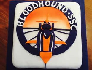 Bloodhound Celebration